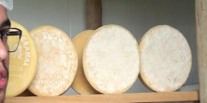 Produtor de queijo de Patos de Minas recebe medalha de ouro em competição nacional
