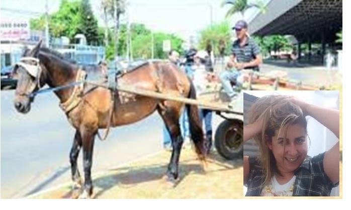 Filha tenta ajudar pai que é carroceiro na cidade de Patos de Minas a mudar de profissão e realizar sonho