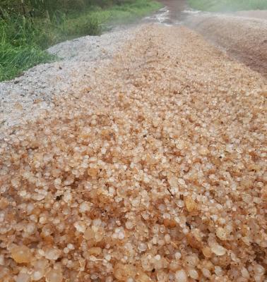 Granizo em grande intensidade e destrói lavouras nos municípios de Carmo e Rio Paranaíba