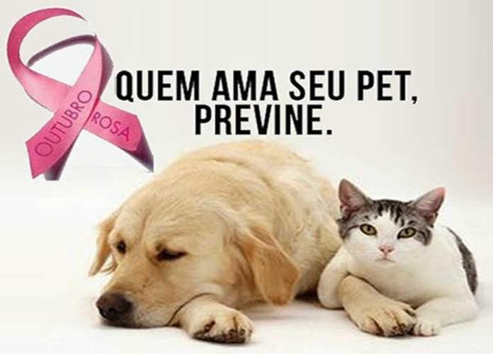 Curso de Medicina Veterinária do UNIPAM realiza Outubro Rosa para animais