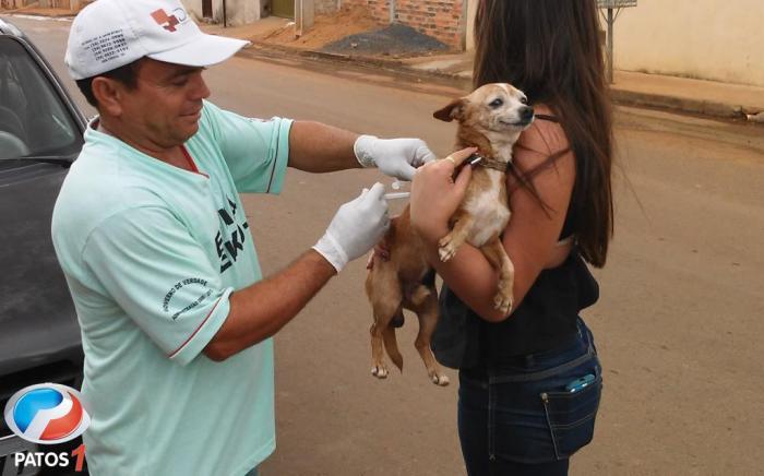 Campanha de vacinação anti-rábica do ano de 2017 em Lagoa Formosa começa nesta terça (11/07)