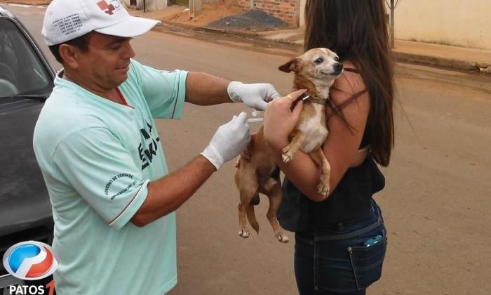Campanha de vacinação contra raiva em cães e gatos acontece até o dia 13 de agosto em Lagoa Formosa