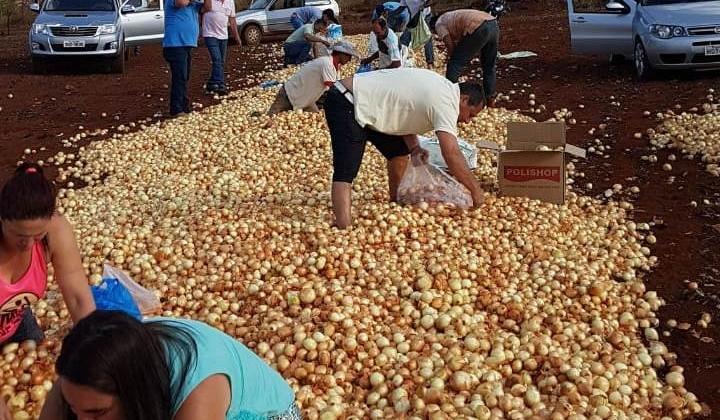 Empresário de Lagoa Formosa abandona toneladas de cebola ás margens de estrada devido ao baixo preço do produto