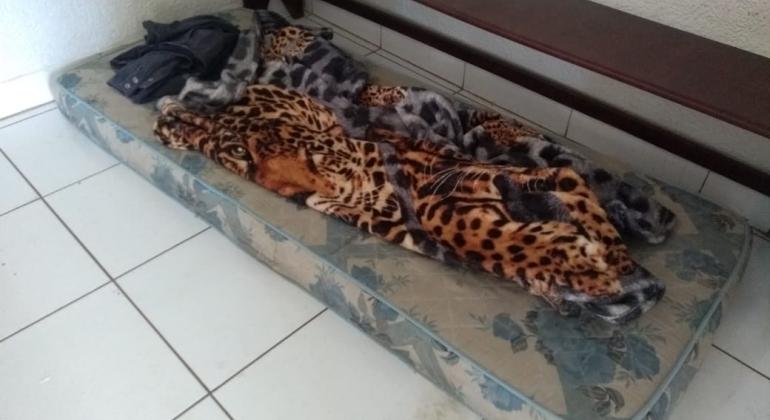 Após festa de aniversário criança de 5 anos é encontrada dormindo sozinha no local do evento
